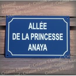 Plaque émaillée personnalisée bleue ou verte 30x20cm - filet rue - texte Arial blanc
