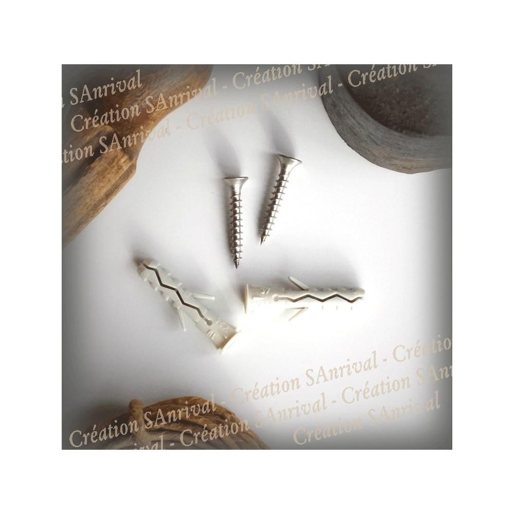 Kit 2 screws + 2 plugs